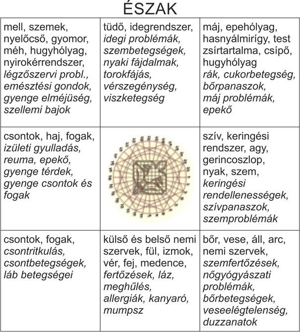 dr-hamvas-ferenc-vaszateria_terrendezes-20141024